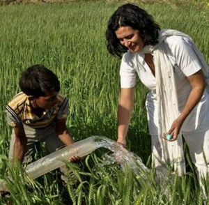 Greenpeace Innovation Challenge for Rural India's Sustainable Irrigation Solution