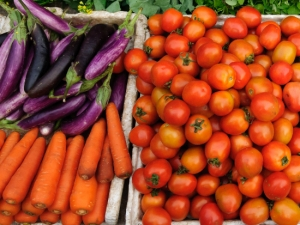 New Global Standard to Create Sustainable Food Future