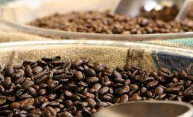 Acumen Invests on Rwanda-based Coffee, Helps Rural Women