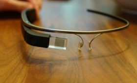 World Wildlife Fund Participates in Google Glass Philanthropy Initiative