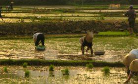 Oxfam Vietnam Launches Impact Investing Program for Social Enterprises