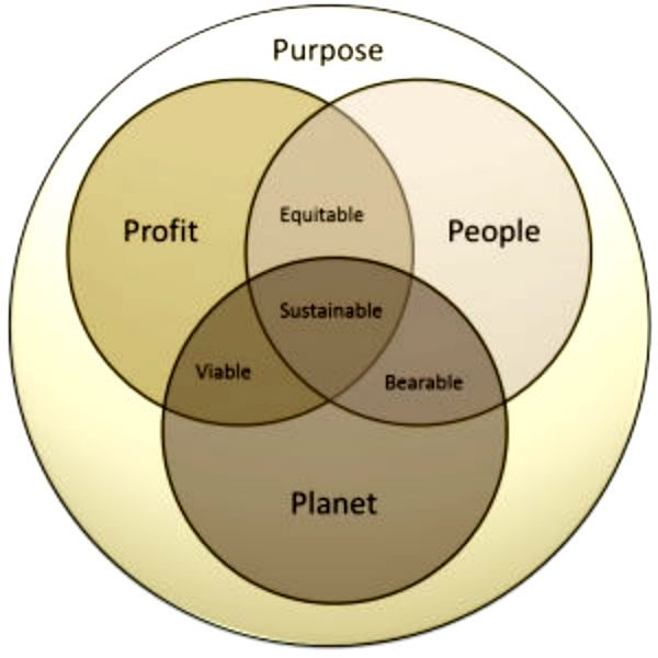 Social Enterprise Associates Guide Clients to Spur Social Wellbeing and Purpose