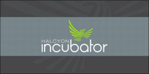 Halcyon Incubator Selects Inaugural Class of Fellows